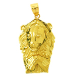 14k gold lion head with paw pendant