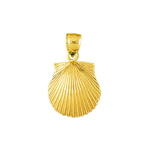 14 kt gold 14mm scallop shell charm