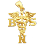 14k gold bsn bachelor science nursing caduceus pendant