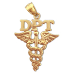 14k gold dpt doctor physical therapy caduceus pendant