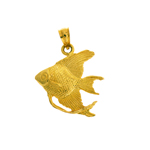 14k gold freshwater angelfish pendant