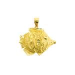 14kt gold marine angelfish charm