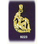 14k gold 3-d zodiac aquarius charm