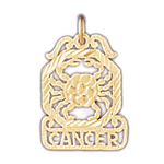 14k gold cancer zodiac charm