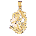 14kt gold zodiac aquarius charm