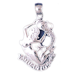 14k white gold zodiac aquarius charm