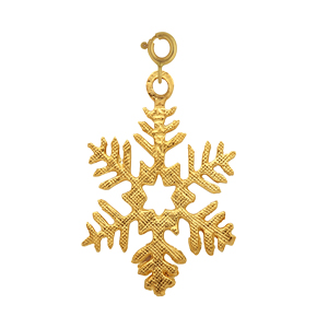 14k gold snowflake with star in center charm