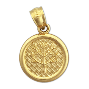 14k gold seven wishes long life charm