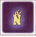 14kt yellow gold nugget initial charm
