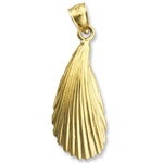 14k gold mussel shell mollusc charm pendant