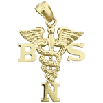 14k gold bsn bachelor science nursing caduceus charm pendant