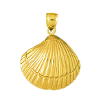 14k gold 20mm seashell pendant