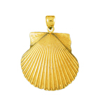 14k gold 22 mm scallop shell charm pendant