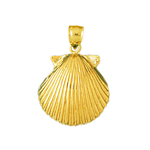 14k gold 14mm scallop seashell charm
