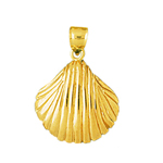 14k gold 15mm seashell charm