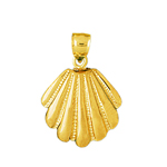14 kt gold 18mm scallop shell pendant