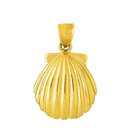 14k gold 22mm scallop seashell charm pendant
