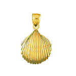 14k gold cockle mollusk shell pendant