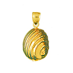 14k gold 11mm mollusk shell charm