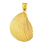 14k gold mussel clam shell mollusc pendant