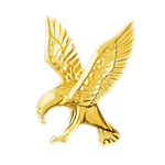 14k gold 25mm eagle pendant