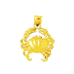 14kt gold crab charm