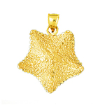 14k gold exotic starfish pendant