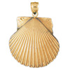 scallop shell charm